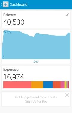 Dollarbird's Expense and Balance Summary Page.